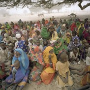 internally_displaced_persons_in_darfur.jpg