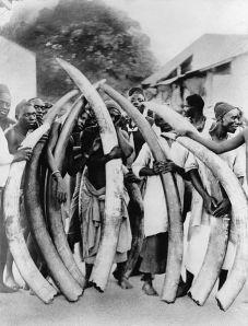 455px-Ivory_trade